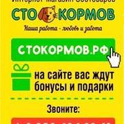 Сто Кормов Зоомагазин Набережные Челны Интернет Магазин