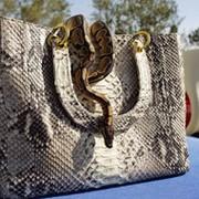 Python-bag Изделия из кожи питона.  group on My World