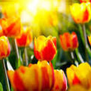 Людмила Ершова on My World.