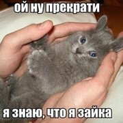 Санек Зайцев on My World.
